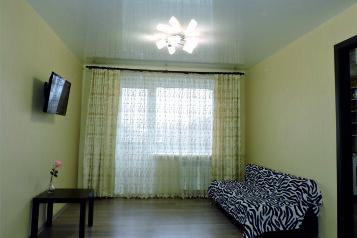 1-комн. квартира, 34 кв.м. на 4 человека, Казанский проспект, Набережные Челны - Фотография 4