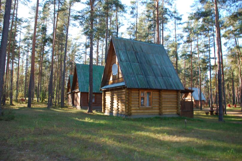 База отдыха, деревня Боровое, 1 на 9 номеров - Фотография 8