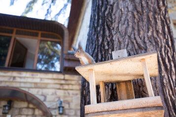 Хостел, Ривьерский переулок на 10 номеров - Фотография 3