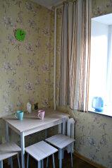 2-комн. квартира, 33 кв.м. на 4 человека, улица Ленина, Пермь - Фотография 3