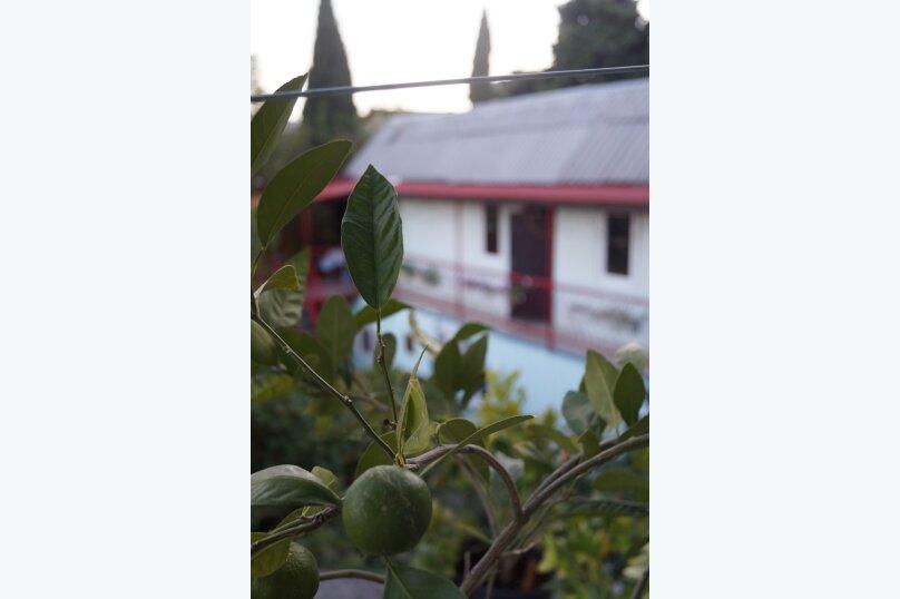"""Гостевой дом """"У Леопольдовича"""", Подгорная улица, 2А на 17 номеров - Фотография 85"""