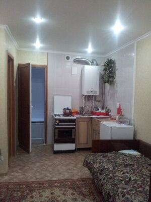 2-комн. квартира, 29 кв.м. на 3 человека
