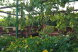 Гостевой Дом, Новая, 120 на 12 номеров - Фотография 11