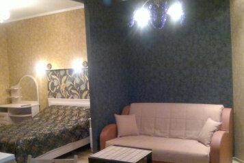 1-комн. квартира, 30 кв.м. на 4 человека, Кузнечный переулок, 14Б, Санкт-Петербург - Фотография 1