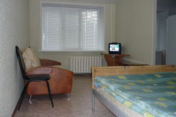 1-комн. квартира, 33 кв.м. на 5 человек, улица Куйбышева, Нижний Новгород - Фотография 2