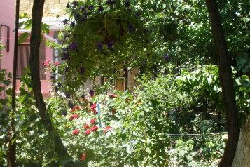Комната в частном дворе и частном доме, Трудовая улица на 2 номера - Фотография 4