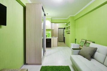1-комн. квартира, 25 кв.м. на 2 человека, Халтуринский переулок, 4А, Ростов-на-Дону - Фотография 1