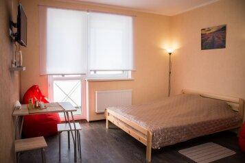 1-комн. квартира, 28 кв.м. на 3 человека, Московское шоссе, 33к4, Рязань - Фотография 2