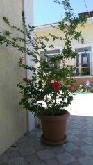 Гостиница, Алуштинская улица на 17 номеров - Фотография 3