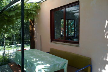 Гостевой дом в частном секторе, Виноградная улица на 7 номеров - Фотография 3