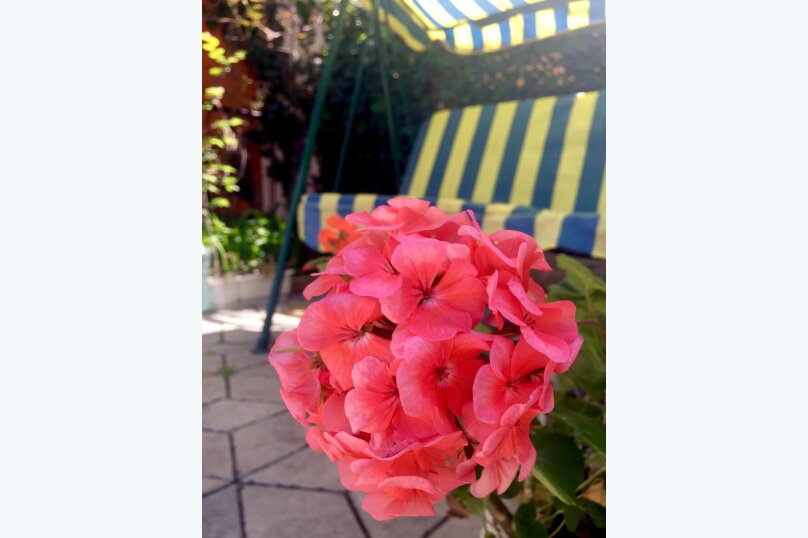 """Гостевой дом """"СМС-Юг"""", улица Федько, 1В на 7 комнат - Фотография 71"""