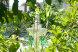 """Гостевой дом """"Лесная поляна"""",  Солнечная,  Левое ущелье на 5 комнат - Фотография 22"""