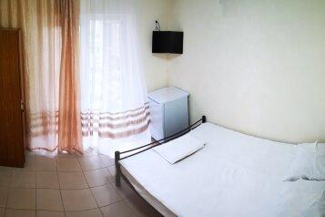Двухместный номер с 1 двухспальной кроватью:  Номер, 2-местный, Гостевой дом , Красноармейская улица на 13 номеров - Фотография 3