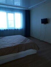 1-комн. квартира, 48 кв.м. на 5 человек, Волжская набережная, 8, Нижний Новгород - Фотография 2