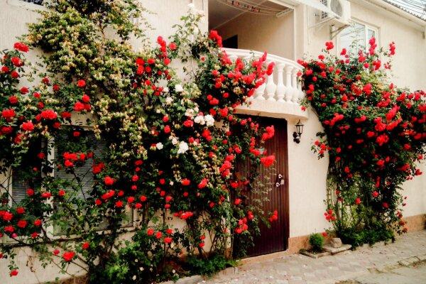 Гостевой дом , Школьная улица, 3 на 15 номеров - Фотография 1