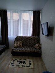 1-комн. квартира, 18 кв.м. на 3 человека, улица Чкалова, Адлер - Фотография 2