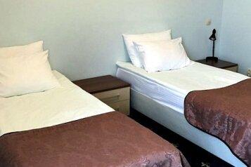 Делюкс Твин:  Номер, 3-местный (2 основных + 1 доп), 2-комнатный, Гостиница, улица Мичурина на 25 номеров - Фотография 3
