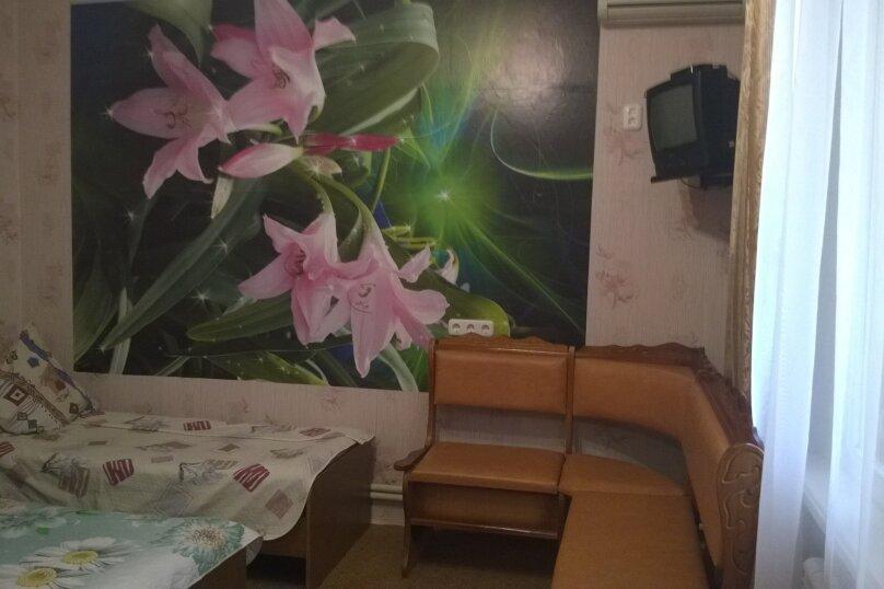 Гостевой дом у Натали, улица Толстого, 34 на 12 комнат - Фотография 42