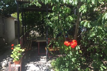 Семейный гостевой дом, улица Луначарского, 15 на 12 номеров - Фотография 3
