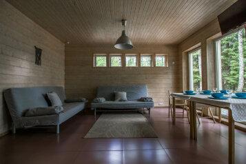 Коттедж на оз. Ахвенлампи, 80 кв.м. на 8 человек, 4 спальни, Ахвенлампи, Лахденпохья - Фотография 4