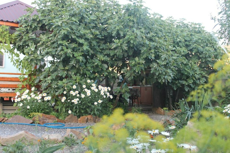 Семейный домик, Бульвар Ореховый , 47 на 1 номер - Фотография 7