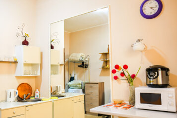1-комн. квартира, 20 кв.м. на 3 человека, улица Марата, метро Владимирская, Санкт-Петербург - Фотография 2