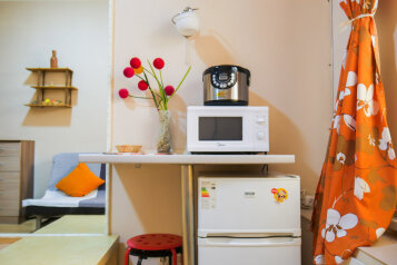 1-комн. квартира, 20 кв.м. на 3 человека, улица Марата, метро Владимирская, Санкт-Петербург - Фотография 3