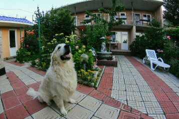 Мини-отель, улица Калинина, 32 на 17 номеров - Фотография 1