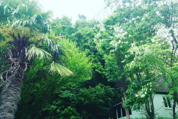 База отдыха, п. Магри, ущелье возле р. Шуюк на 15 номеров - Фотография 1