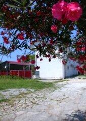 Гостевой дом, улица Туманяна, 8 на 16 номеров - Фотография 3