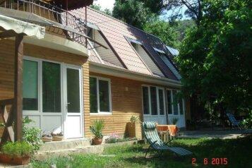 Гостевой дом, Голубая на 8 номеров - Фотография 1