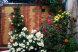 Гостевой дом, улица Спендиарова на 10 номеров - Фотография 18