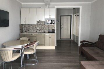 1-комн. квартира, 32 кв.м. на 4 человека, Виноградная улица, Сочи - Фотография 2