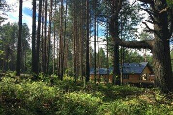 Загородный дом, 100 кв.м. на 6 человек, 3 спальни, Кишкойла, Пряжа - Фотография 1