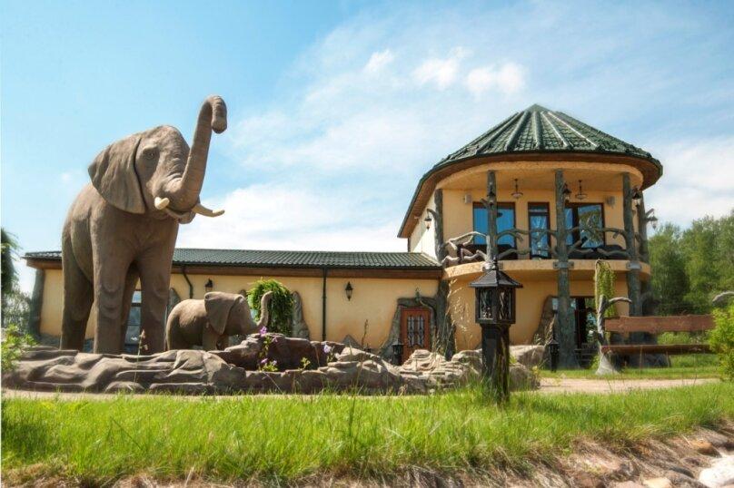 Африканский дом, дер. Кушелово, Большая, 1, Волоколамск - Фотография 10