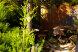Гостиница, Любимовка, ул. Донецкая на 14 номеров - Фотография 50