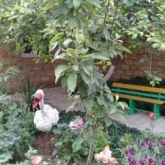 Номера в частном дворе, Юбилейная улица на 10 номеров - Фотография 2