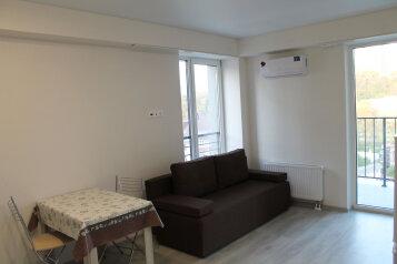 1-комн. квартира, 29 кв.м. на 3 человека, Старошоссейная улица, Дагомыс - Фотография 1