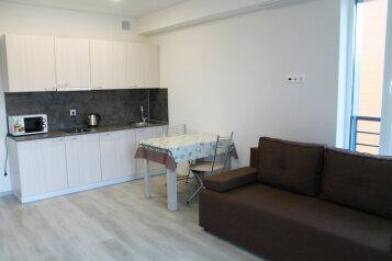 1-комн. квартира, 29 кв.м. на 3 человека, Старошоссейная улица, Дагомыс - Фотография 4