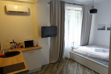 1-комн. квартира на 3 человека, Вознесенская улица, Красная Поляна - Фотография 4