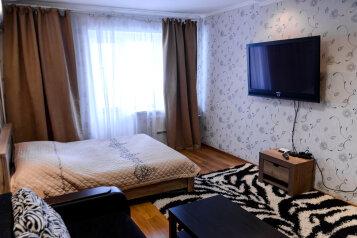 1-комн. квартира, 42 кв.м. на 4 человека, Арсенальная , 4а, Центральный район, Воронеж - Фотография 2