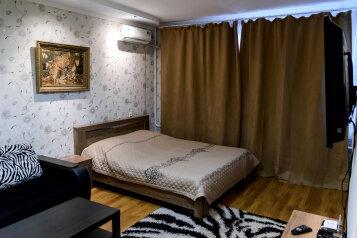 1-комн. квартира, 42 кв.м. на 4 человека, Арсенальная , 4а, Центральный район, Воронеж - Фотография 3