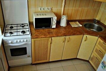 1-комн. квартира, 32 кв.м. на 2 человека, 1 Красноармейская, 52, Свердловский район, Пермь - Фотография 4