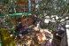 Дом, 80 кв.м. на 11 человек, 4 спальни, Курортная улица, Голубицкая - Фотография 8