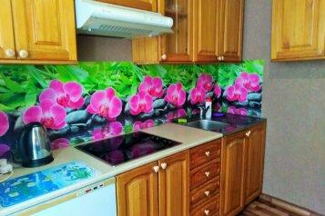 2-комн. квартира, 65 кв.м. на 4 человека, улица 78-й Добровольческой Бригады, Красноярск - Фотография 2