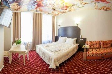 Люкс:  Номер, Люкс, 2-местный, Отель, Кронверкский проспект, 23 на 5 номеров - Фотография 4