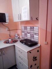 1-комн. квартира, 32 кв.м. на 3 человека, петрова-водкина, 8, Хвалынск - Фотография 4