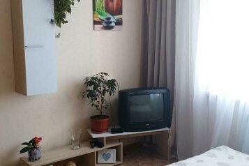 1-комн. квартира, 19 кв.м. на 2 человека, Бурнаковская улица, Нижний Новгород - Фотография 3