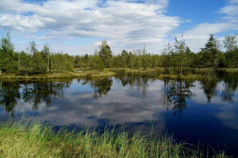 Коттедж в лесу с баней, 90 кв.м. на 15 человек, Рахья, Строителей, уч 4, Санкт-Петербург - Фотография 34