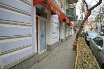 """Отель """"Almeto"""", улица Луи Пастера, 4 на 8 номеров - Фотография 1"""
